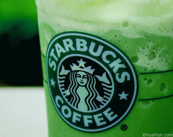 ชาเขียว Starbucks Green Tea