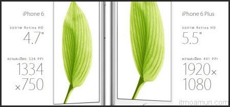 iPhone 6 ขนาดจอ