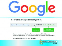 HTTP Strict Transport Security Google