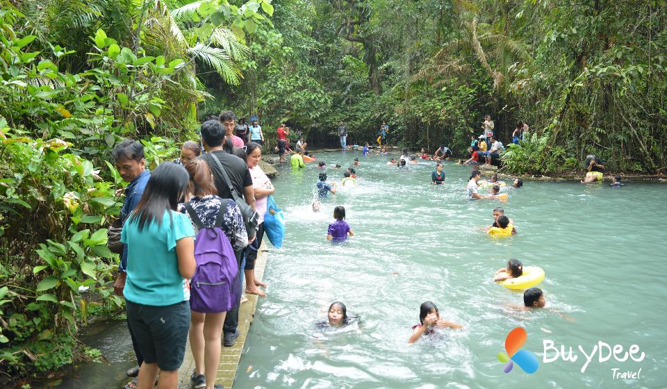 ป่าต้นน้ำบ้านน้ำราด อำเภอคีรีรัฐนิคม จังหวัดสุราษฎร์ธานี (Pa Ton Nam Ban Nam Rad)