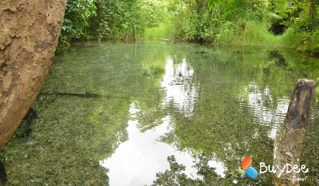 น้ำพุร้อนธรรมชาติไทรงาม (Sai Ngam Natural Hot Spring) แช่ออนเซ็นสไตล์ไทยๆ น้ำใสสีเขียวมรกต